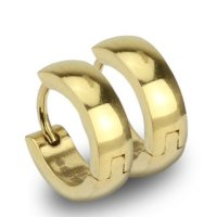 Edelstahl Creolen Ohrringe - Gold