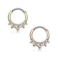 Septum Klicker - Ring - Kristalle - Spitz