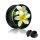 Picture Plug - Gewinde - Exotische Blume